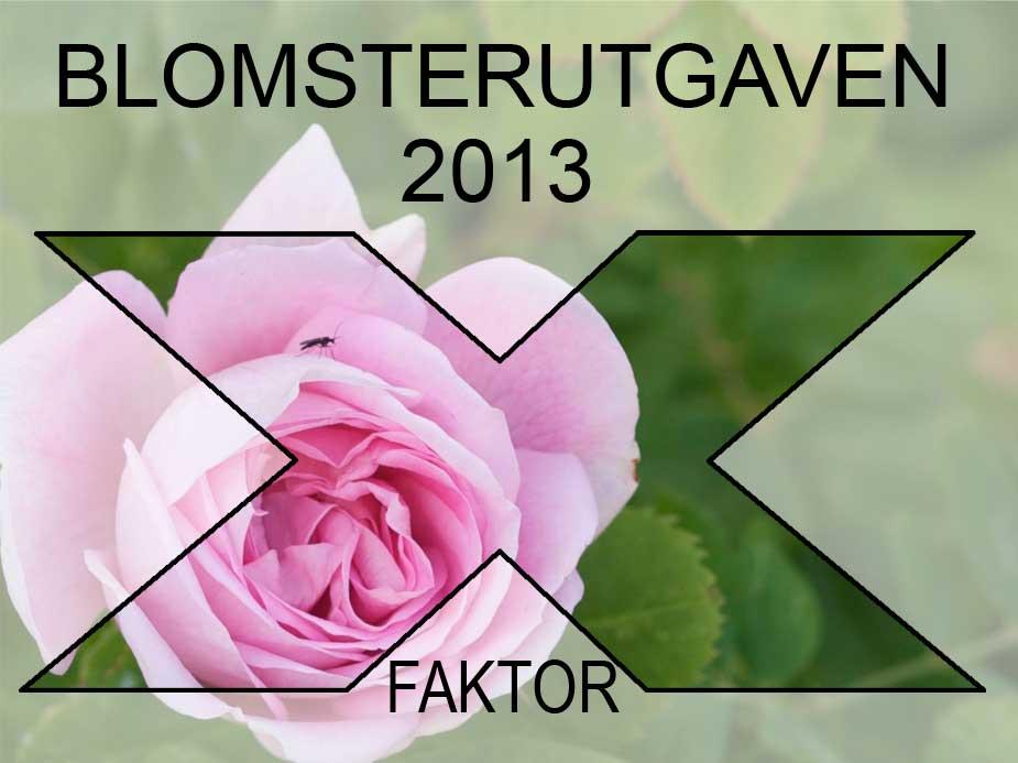x-faktor-rosa