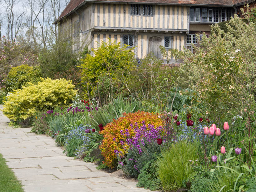 great-dixter-boarder