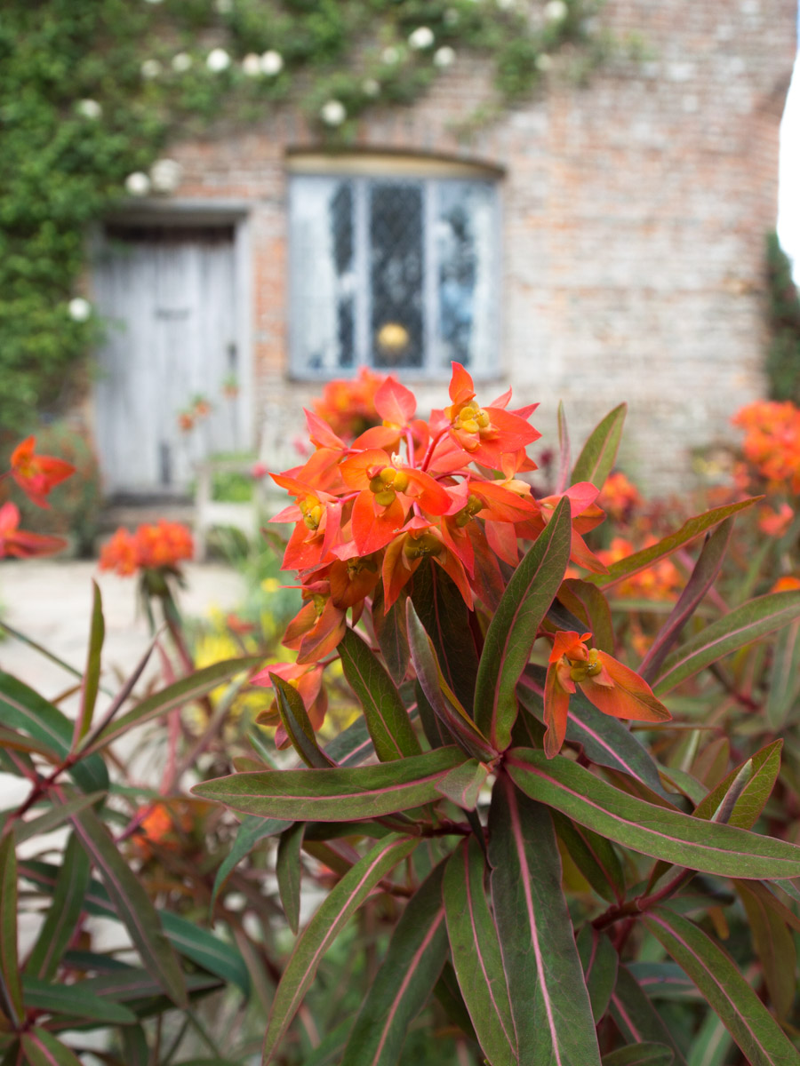 sissinghurst-planter-5