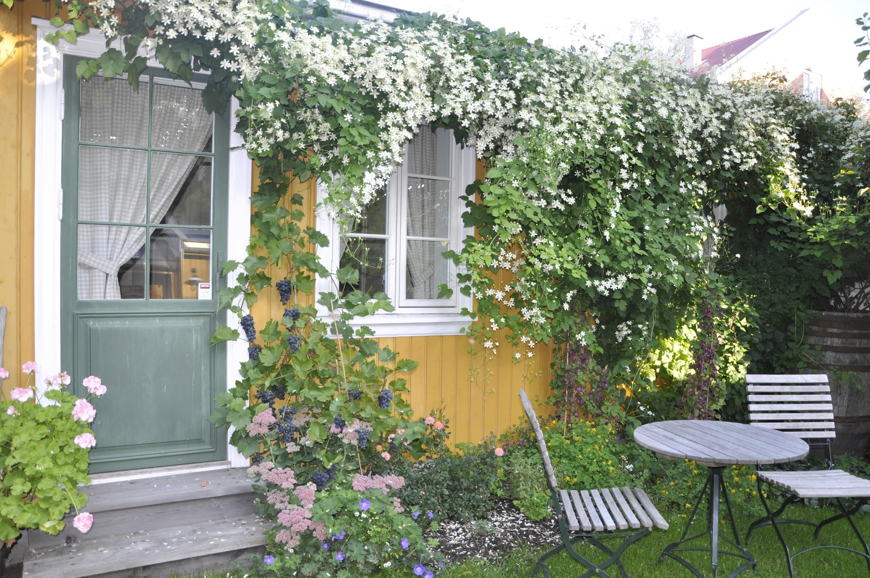 Et Glimt Inn I Byhagen Vist På Nrk Moseplassen
