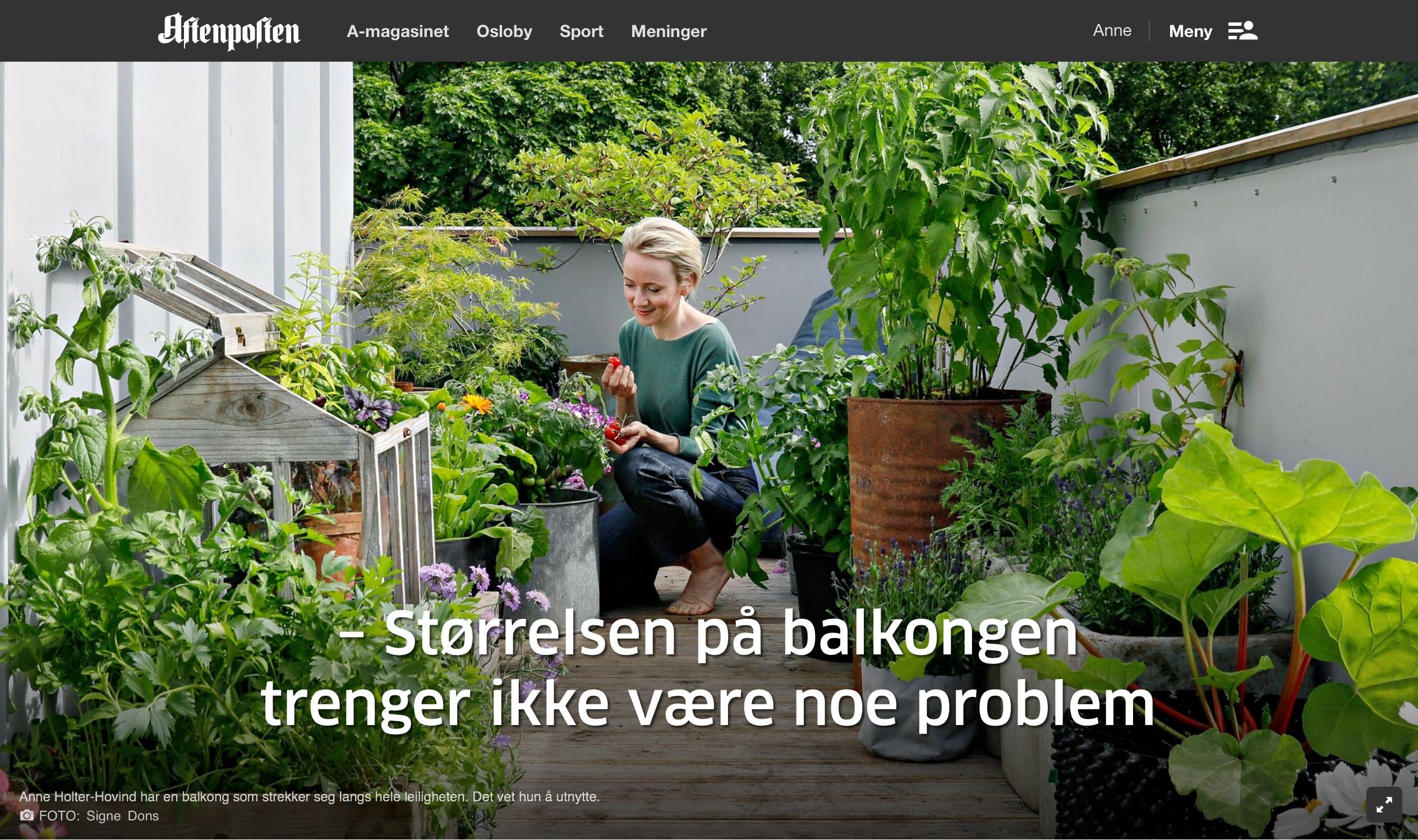 Screenshot Aftenposten. Foto Signe Dons