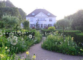 Claus Dalbys hagebok Selskapsplanter om planter som passer sammen