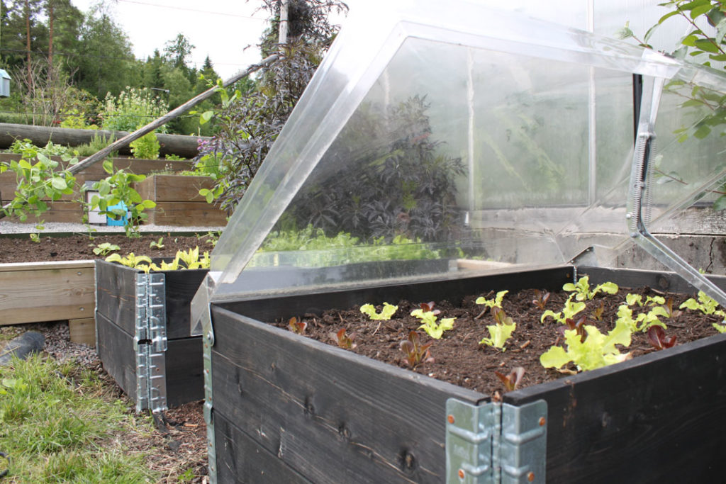 Smart minidrivhus for pallekarm, bilde: nordic garden