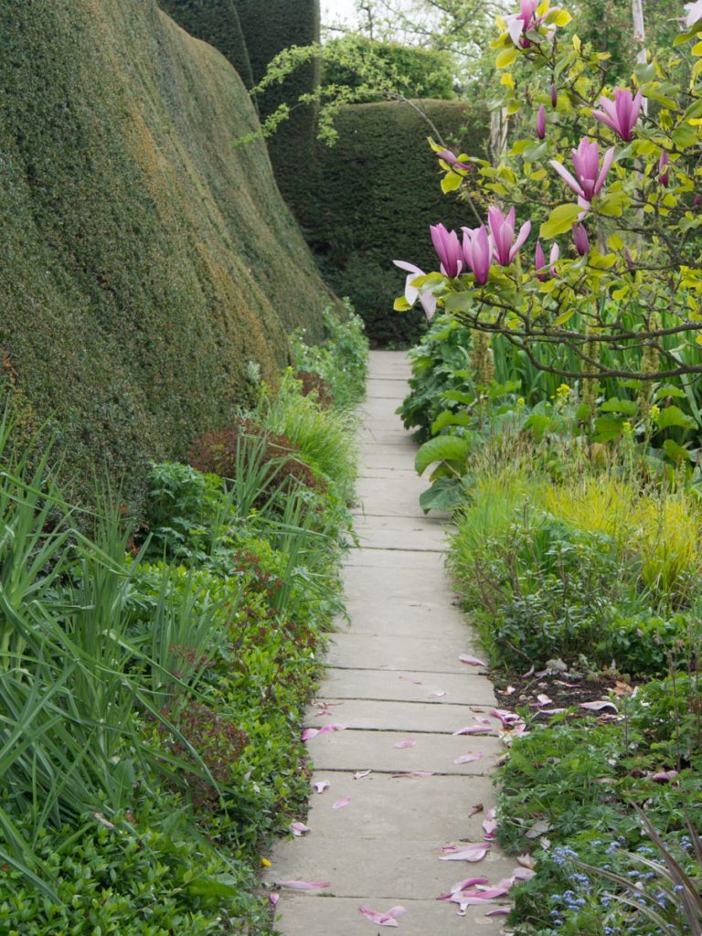 Vakker klippet hekk i Engelsk hage (Great Dixter)