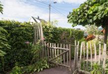Nyklippet bøkehekk i hage med kastanjegjerde