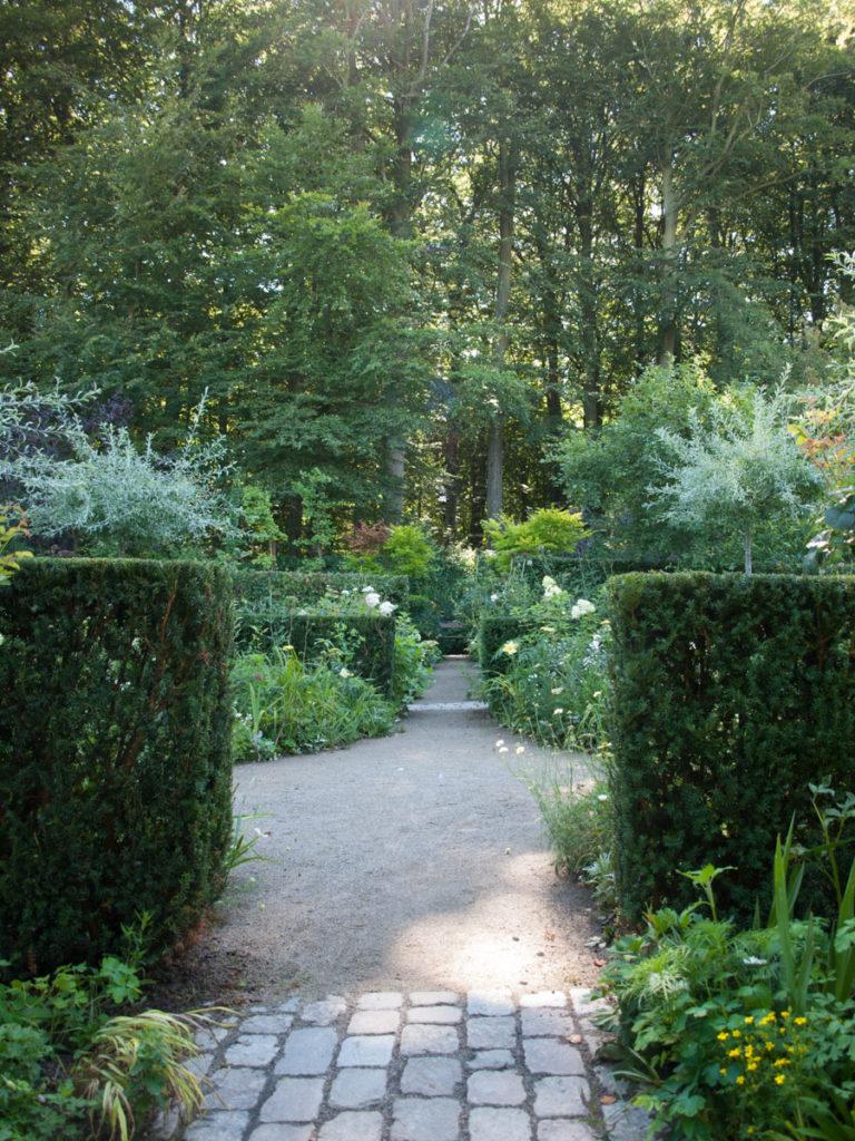 slanke strame barlindhekker i Claus Dalbys hage
