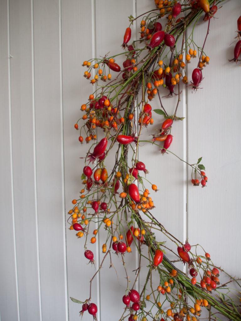 Nypekrans med hagenyper