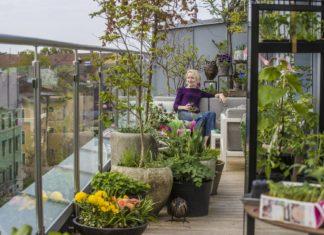 Fotograf Mattis Sandblad, Anne sitter i sofa på balkongen mellom planter
