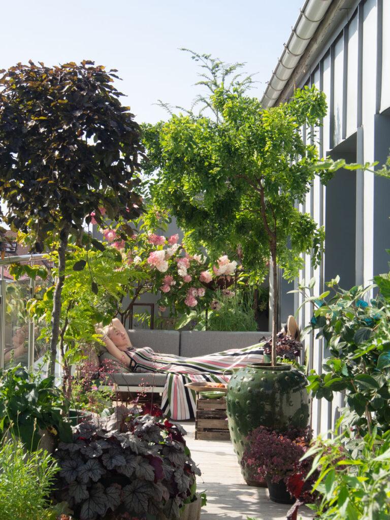 Anne ligger i hagesofa på balkongen, med twisty baby i bildet på høyre side